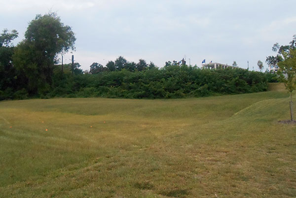 The site of the proposed amphitheater, with the Virginia War Memorial in the background. The overgrown area is part of the canal. (Photo by Burl Rolett)