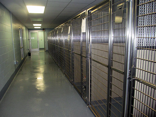 The dog kennels were completely redone and expanded as part of the project.