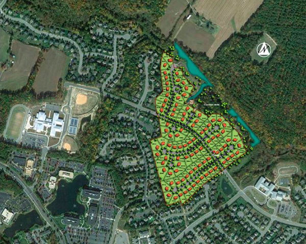 Winchester Homes' site plan for the development. (Courtesy of Winchester Homes)