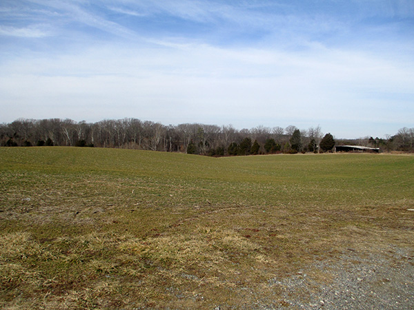 Part of the 75-acre Nuckols Farm property.