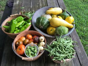 Residents will have access to organic produce from the garden.