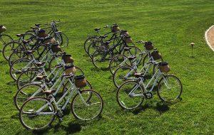 Bike & Basket's fleet of 16 bicycles.