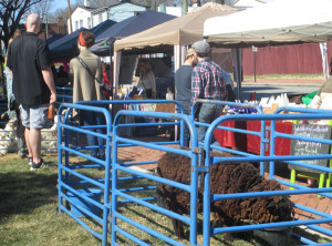 The recent pop-up farmer's market held at Urban Farmhouse's new Church Hill location. (photo by Burl Rolett)